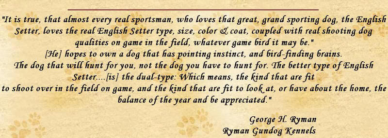 The English Setter By George Ryman, Gundog Kennels